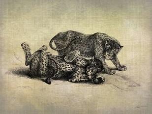 Big Cats II Digital Print by Butler, John,Decorative