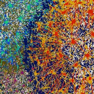Profusion I Digital Print by Burghardt, James,Abstract