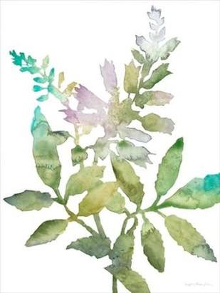 Blooms For Nico I Digital Print by Meagher, Megan,Impressionism