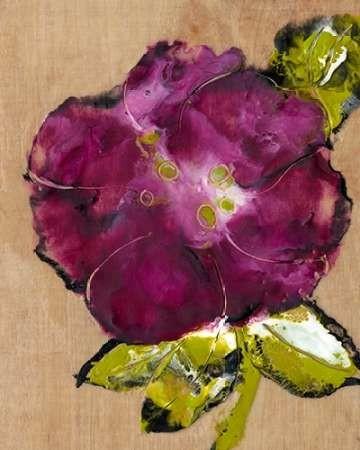 Camellia Passion II Digital Print by Ludwig, Alicia,Impressionism
