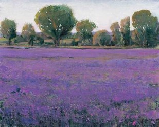 Lavender Field I Digital Print by O'Toole, Tim,Impressionism