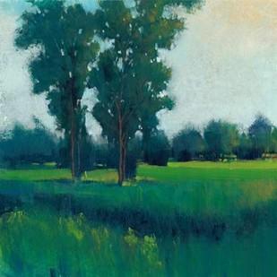 Afternoon Sun I Digital Print by O'Toole, Tim,Impressionism