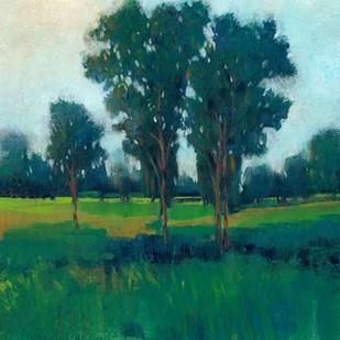 Afternoon Sun II Digital Print by O'Toole, Tim,Impressionism