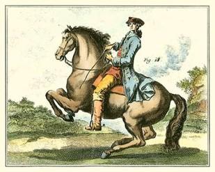 Equestrian Training IV Digital Print by Diderot, Denis,Impressionism