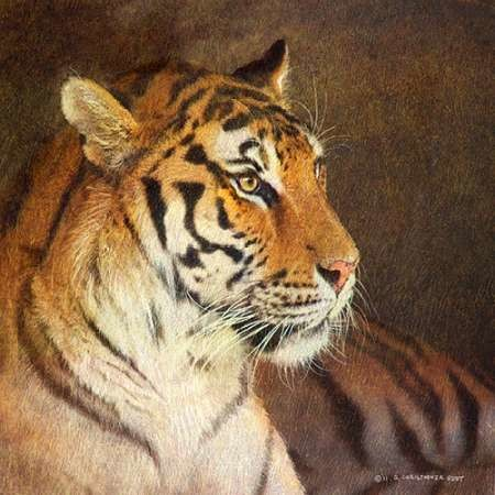 Tiger Digital Print by Vest, Chris,Realism