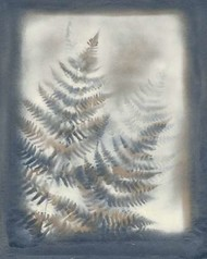Shadows & Ferns VI Digital Print by Stramel, Renee W.,Decorative