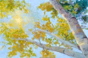 Aspen Canopy Digital Print by Oleson, Nanette,Impressionism