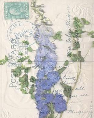 Small Postcard Wildflowers II Digital Print by Goldberger, Jennifer,Art Deco