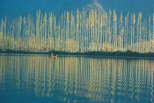 Himalaya 08 by Ashwin Mehta, Image Photograph, Digital Print on Paper, Green color