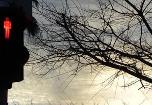 THE WAIT by Nin Taneja, Image Photograph, Digital Print on Canvas, Gray color