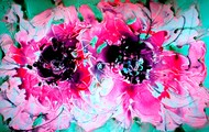 Imaginative Blooms by Baljit Singh Chadha, Impressionism Painting, Mixed Media on Paper, Pink color