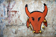 Red Bull by Sanjay Nanda, Image Photograph, Digital Print on Canvas, Brown color