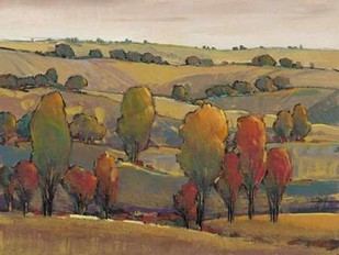 Rolling Hills II Digital Print by OToole, Tim,Impressionism