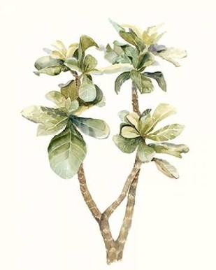 Tropical Watercolor Leaves III Digital Print by Meagher, Megan,Decorative