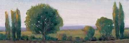 Panoramic Treeline I Digital Print by OToole, Tim,Impressionism