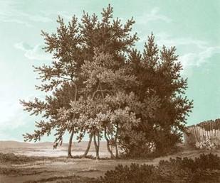 Serene Trees IV Digital Print by Kennion, Edward,Realism