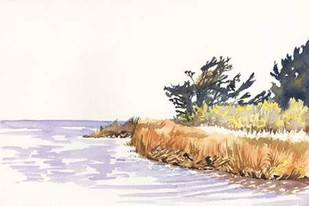 Solitary Coastline III Digital Print by Miller, Dianne,Impressionism