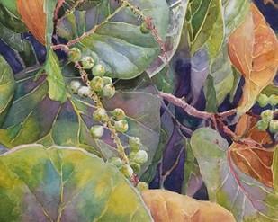 Sea Grapes II Digital Print by Fagan, Edie,Decorative