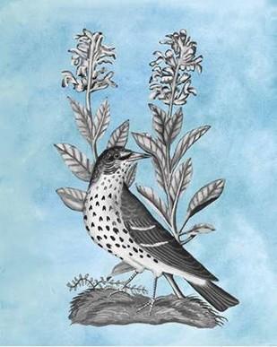 Bird on Blue I Digital Print by McCavitt, Naomi,Decorative
