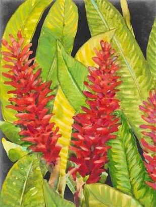 Red Tropical Flowers I Digital Print by Otoole, Tim,Decorative