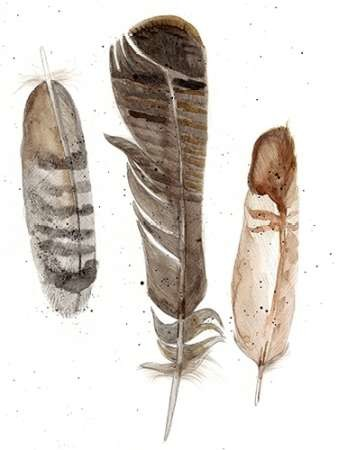 Earthtone Feathers I Digital Print by Ludwig, Alicia,Decorative