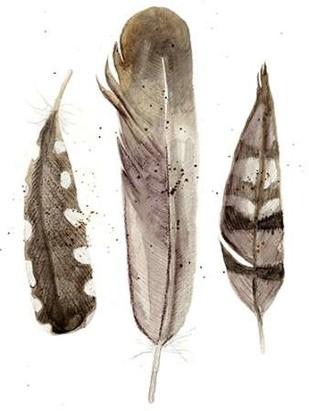 Earthtone Feathers II Digital Print by Ludwig, Alicia,Decorative