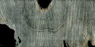 Gray Ghost II Digital Print by Butler, John,Abstract
