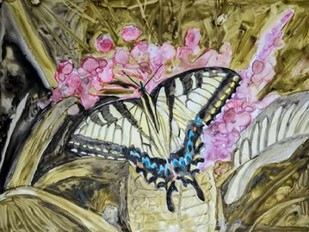 Butterfly in Nature II Digital Print by Lynnsy, B.,Impressionism