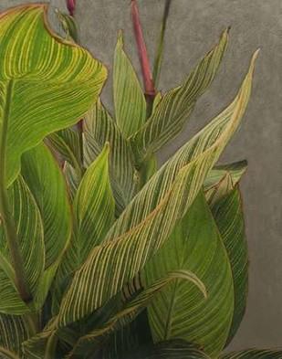 Non-Embellished Dramatic Leaves II Digital Print by Zarris, Charliklia,Realism