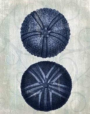 Indigo Blue Sea Urchins a Digital Print by Fab Funky,Decorative