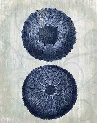 Indigo Blue Sea Urchins b Digital Print by Fab Funky,Decorative