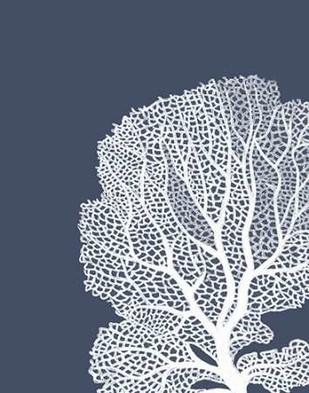 Corals White on Indigo Blue B Digital Print by Fab Funky,Decorative