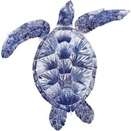 Marine Turtle II Digital Print by Popp, Grace,Decorative