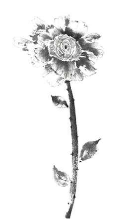 Ink Rose Digital Print by Rae, Nan,Illustration