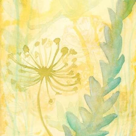Florid Garden II Digital Print by Stramel, Renee W.,Decorative