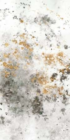 Gilded Mist II Digital Print by Studio W,Abstract