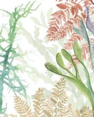 Woven Seaplants I Digital Print by McCavitt, Naomi,Impressionism