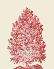 Red Corals 1 d Digital Print by Fab Funky,Decorative