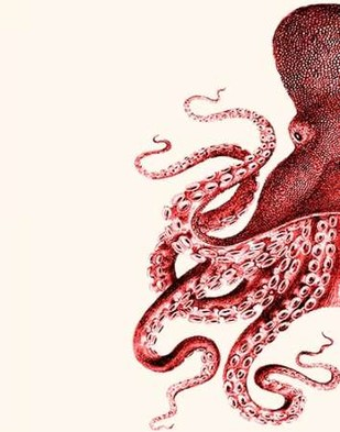 Octopus Red and White a Digital Print by Fab Funky,Decorative