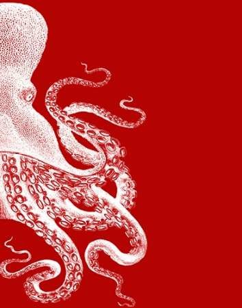 Octopus Red and White b Digital Print by Fab Funky,Decorative