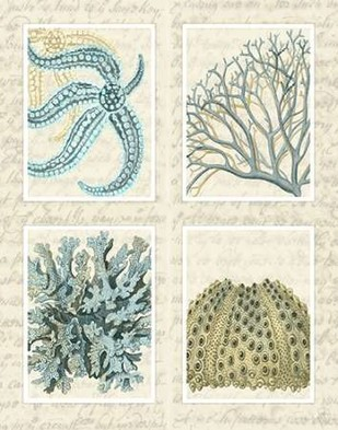 Blue Corals On Vintage Script in 4 Panels Digital Print by Fab Funky,Decorative, Decorative