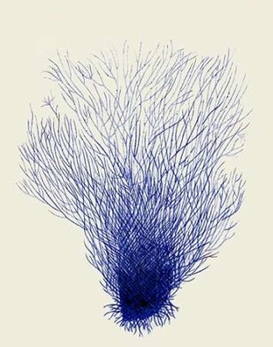 Blue Corals 2 d Digital Print by Fab Funky,Decorative