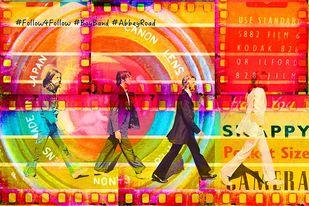 Follow4Follow by Sheetal S Agarwal, Digital Digital Art, Digital Print on Archival Paper, Orange color