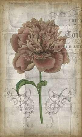 French Floral IV Digital Print by Goldberger, Jennifer,Decorative