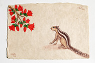 Scurrying Squirrels by Sabia Khan, Realism Drawing, Pen & Ink on Paper, Beige color