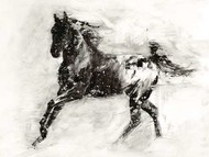 Rustic Appaloosa II Digital Print by Harper, Ethan,Illustration