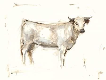 White Cattle I Digital Print by Harper, Ethan,Illustration