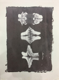 untitled by Krishanu Chatterjee, Image Photography, Hand Cut Paper, Gray color