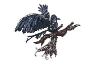 Magpie by Christina Banerjee, Art Deco Sculpture | 3D, Mixed Media on Wood, White color