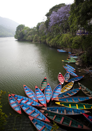 Boats on Phewa Tal by Gautam Vir Prashad, Image Photography, Giclee Print on Hahnemuhle Paper, Gray color
